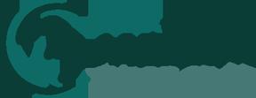 BackStreet Media Logo